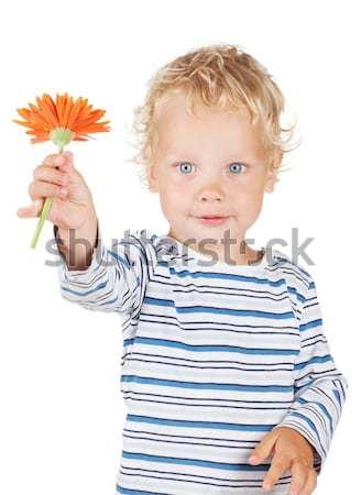Blanche cheveux bouclés yeux bleus bébé fleur isolé Photo stock © karandaev