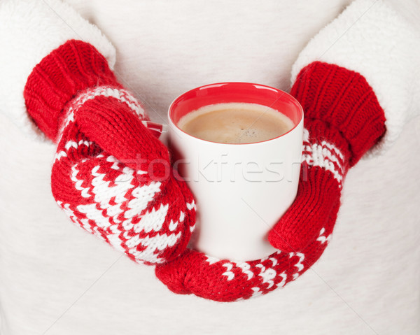 Female hands holding hot chocolate Stock photo © karandaev