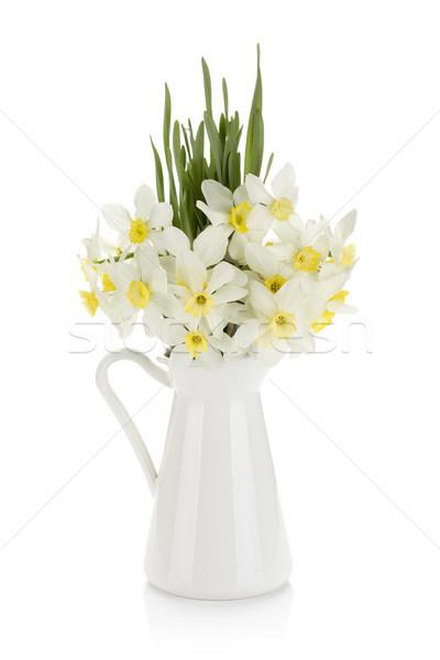花束 白 水仙 孤立した 春 ストックフォト © karandaev