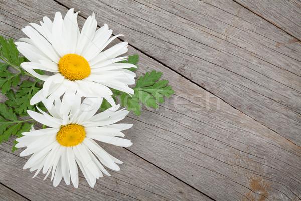 Daisy camomilla fiori tavolo in legno copia spazio foglia Foto d'archivio © karandaev