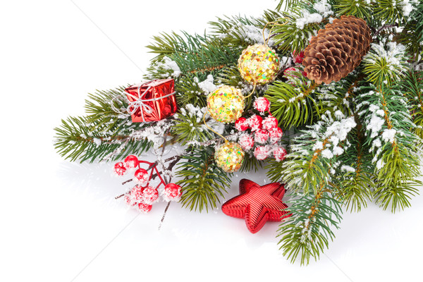 Christmas snow fir tree branch with holly berry and decor Stock photo © karandaev