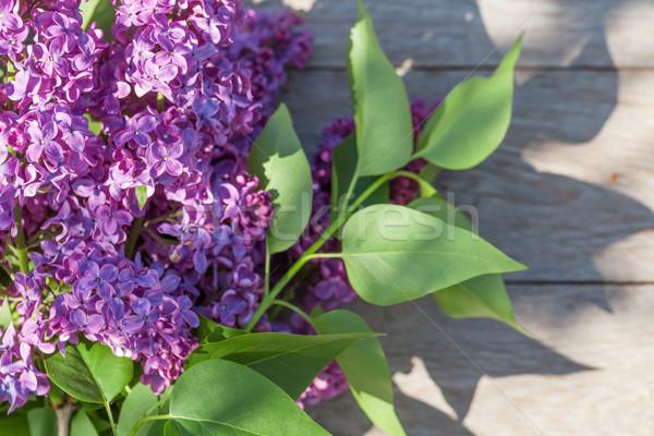 Púrpura lila flores jardín mesa superior Foto stock © karandaev
