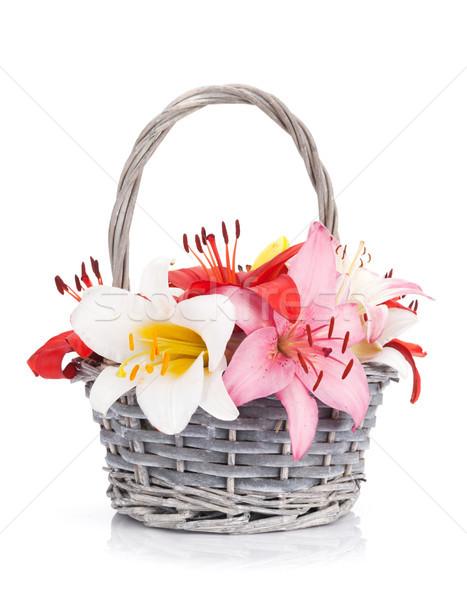 Colorido lírio flores cesta isolado branco Foto stock © karandaev