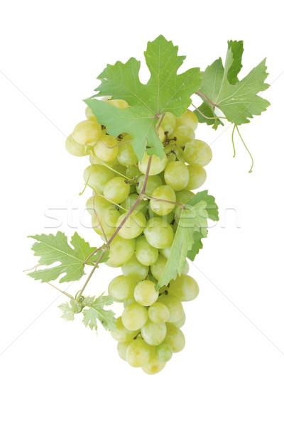 Foto stock: Blanco · uvas · hojas · aislado · vino · naturaleza