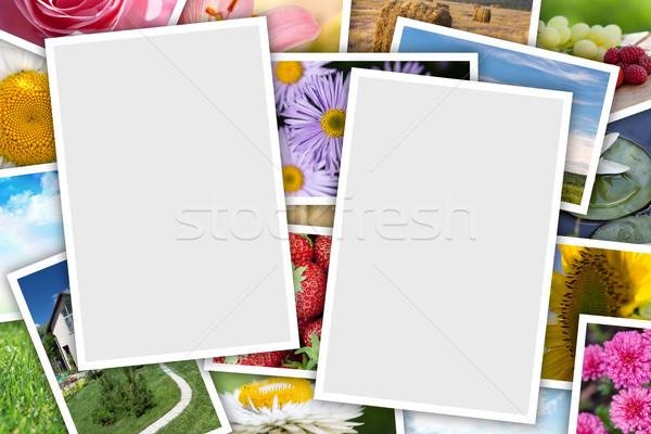 Imprimé photos collage espace de copie fleurs Photo stock © karandaev