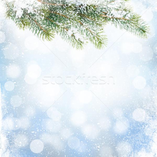 Рождества зима снега расплывчатый bokeh Сток-фото © karandaev