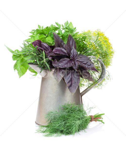 Fresh garden herbs in watering can Stock photo © karandaev