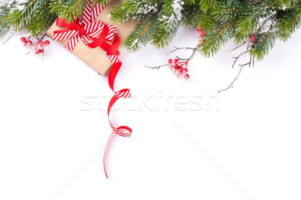 Weihnachtsbaum Zweig Geschenkbox Schnee isoliert weiß Stock foto © karandaev
