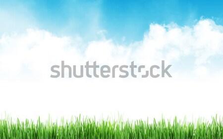 Absztrakt napos tavasz fű égbolt felhők Stock fotó © karandaev