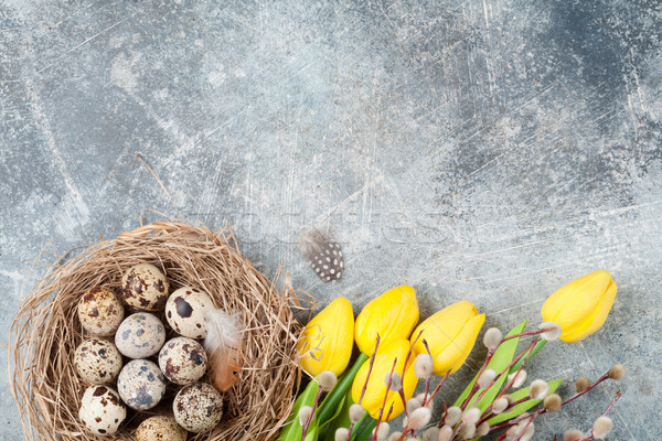 Quails eggs in nest and pussy willow. Easter greeting card Stock photo © karandaev