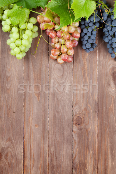 Bunch of colorful grapes with leaves Stock photo © karandaev