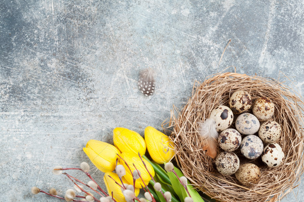 Сток-фото: яйца · гнезда · желтые · цветы · Пасха · Top