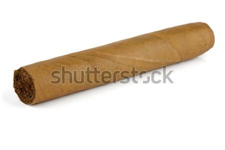 Kubai szivar izolált fehér füst űr Stock fotó © karandaev