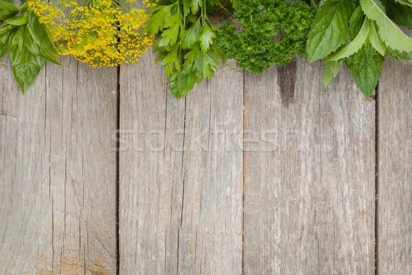 Herbs selection Stock photo © karandaev