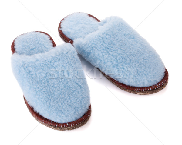 Pair of house slippers Stock photo © karandaev