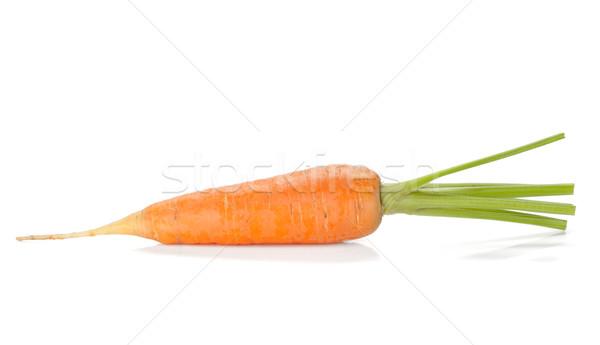 Frescos maduro zanahoria aislado blanco naturaleza Foto stock © karandaev