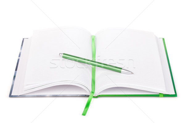 Office organizer and pen Stock photo © karandaev