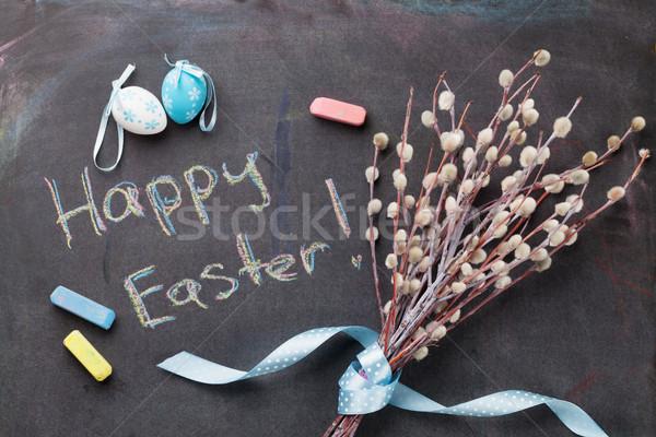 красочный пасхальных яиц киска ива доске Сток-фото © karandaev