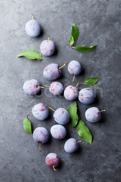 Garden plums Stock photo © karandaev