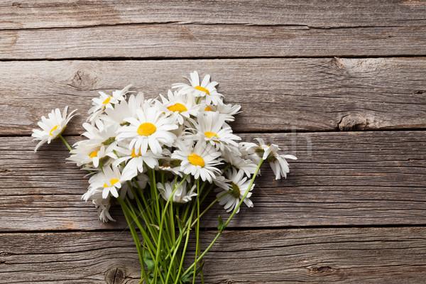 Daisy chamomile flowers bouquet Stock photo © karandaev