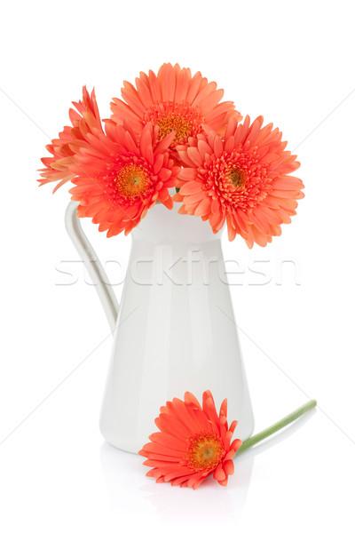 Сток-фото: оранжевый · цветы · изолированный · белый · фон · красоту