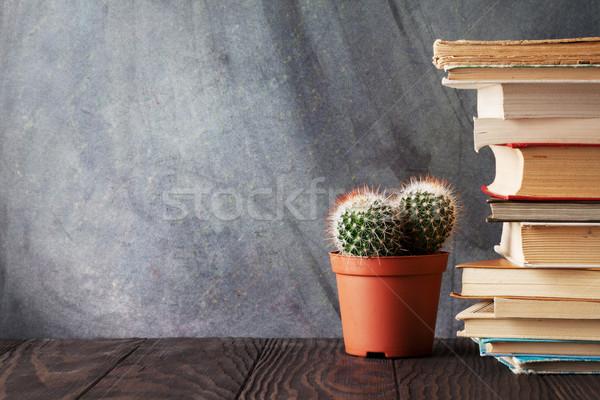 図書 サボテン 教室 チョーク ボード ストックフォト © karandaev