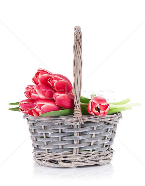 Red tulip flowers bouquet Stock photo © karandaev