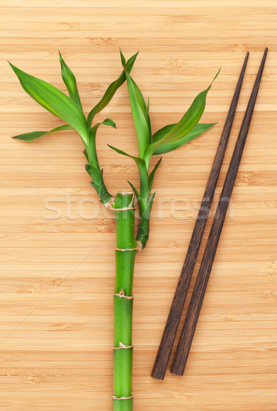 Bamboo plant and chopsticks Stock photo © karandaev