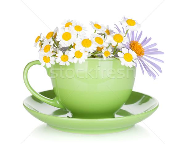 Zöld tea csésze izolált fehér virág virágok Stock fotó © karandaev