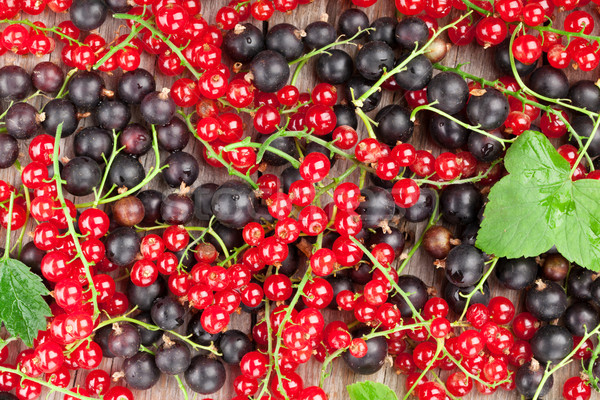 Stock photo: Fresh ripe currant berries