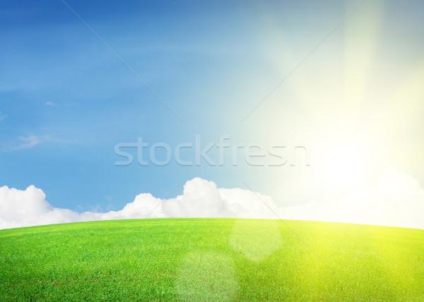 Groen gras veld blauwe hemel wolken heldere zon Stockfoto © karandaev
