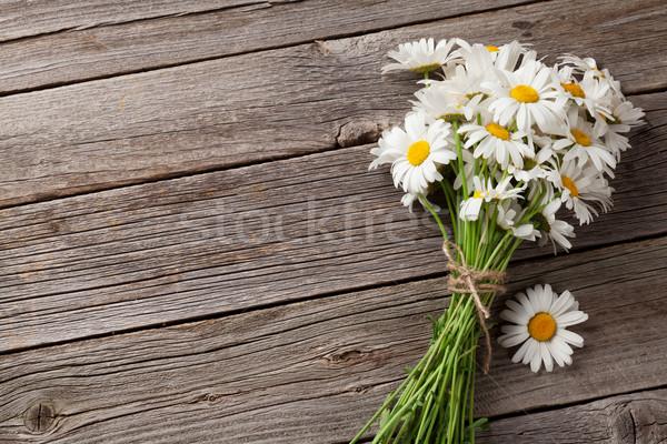 Daisy ромашка цветы саду таблице Сток-фото © karandaev