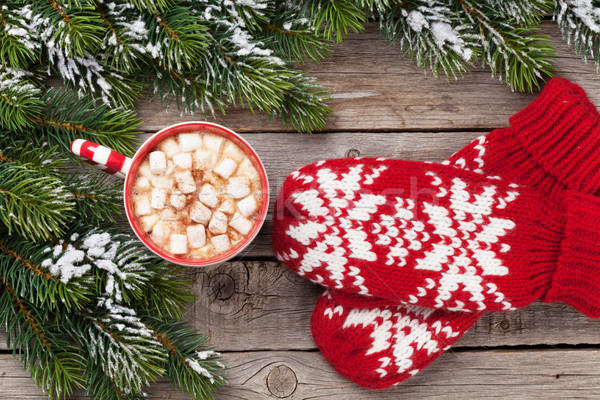 Christmas fir tree, mittens, hot chocolate Stock photo © karandaev