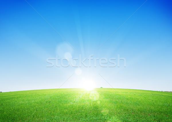 ストックフォト: エンドレス · 緑の草 · フィールド · 深い · 青空 · 空