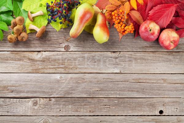 Otono frutas setas colorido hojas Foto stock © karandaev