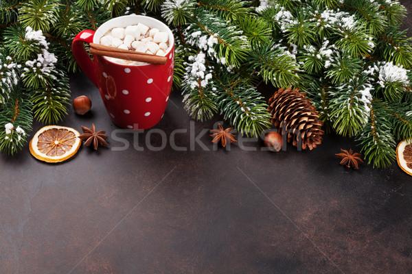 Noel sıcak çikolata hatmi görmek bo Stok fotoğraf © karandaev