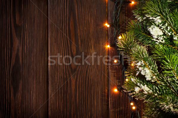 Christmas tree branch and lights Stock photo © karandaev