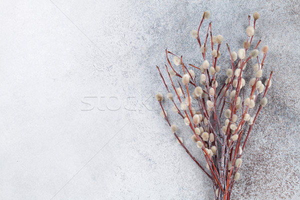 Cono sauce rústico piedra espacio de la copia Pascua Foto stock © karandaev