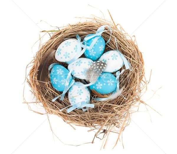 Easter eggs nest Stock photo © karandaev