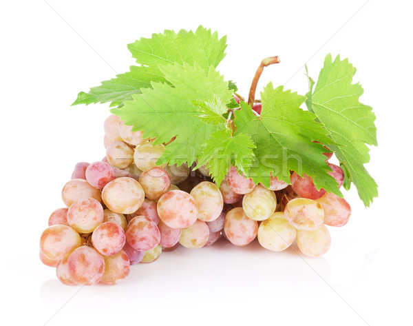 Bunch of red grapes with leaves Stock photo © karandaev