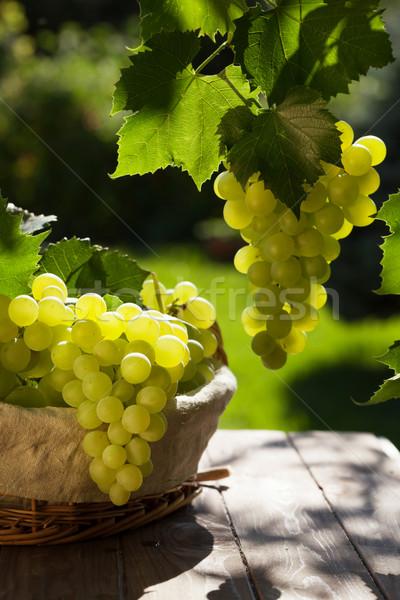 Stock fotó: Fehér · szőlő · kosár · kert · asztal · étel