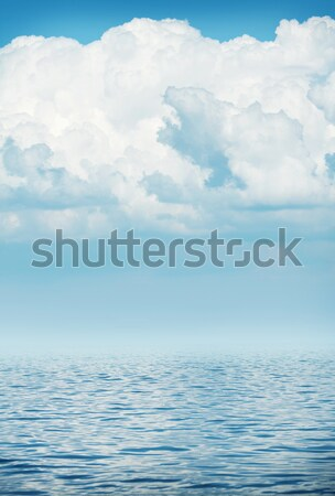Morza horyzoncie mętny niebo fali słońce Zdjęcia stock © karandaev