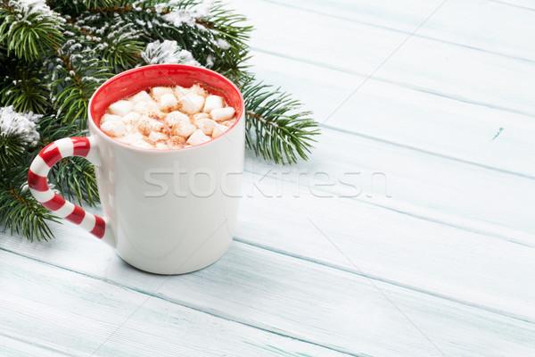 Natal chocolate quente marshmallow ver cópia espaço Foto stock © karandaev