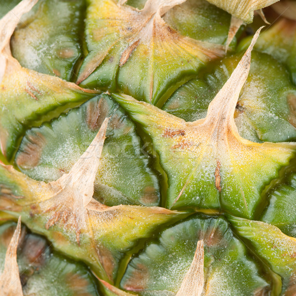 Macro food collection - Pineapple rind Stock photo © karandaev