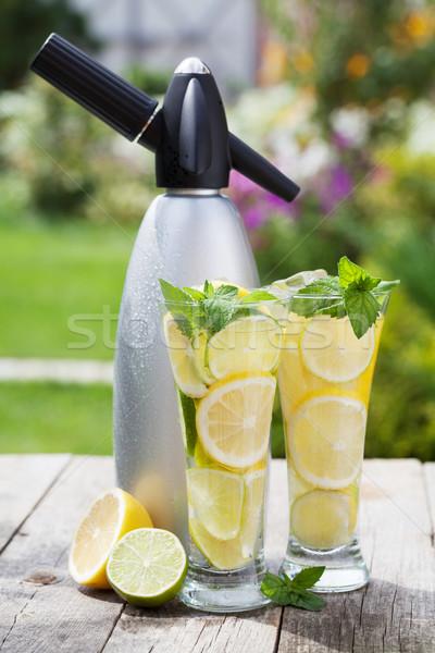 Homemade lemonade and siphon Stock photo © karandaev