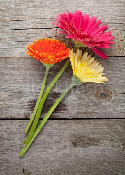 Сток-фото: три · красочный · цветы · деревянный · стол · природы · рождения