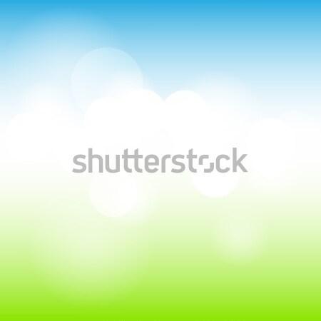 Nature sunny abstract summer background Stock photo © karandaev