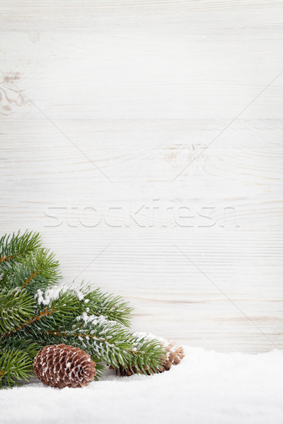 Christmas fir tree covered by snow Stock photo © karandaev