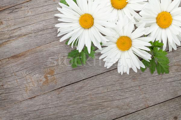 Margarida camomila flores mesa de madeira cópia espaço folha Foto stock © karandaev