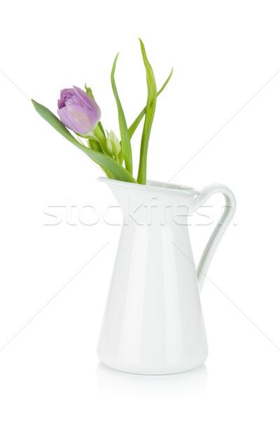 Pink tulip in metal pitcher Stock photo © karandaev